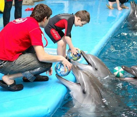 Дельфинотерапия для детей