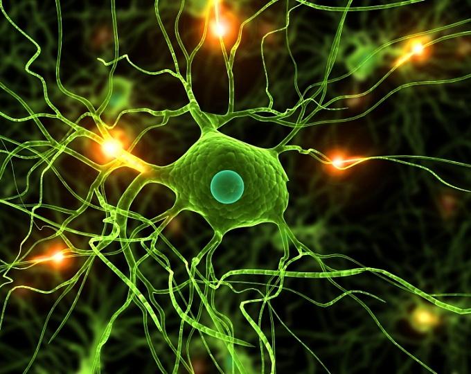 Ген новый метод лечения аутизма