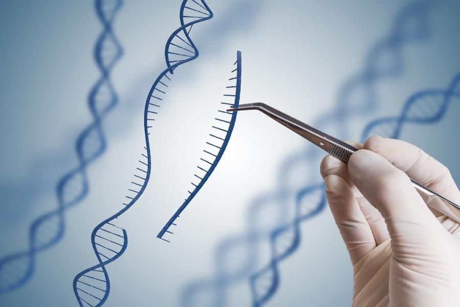 редактирование генов